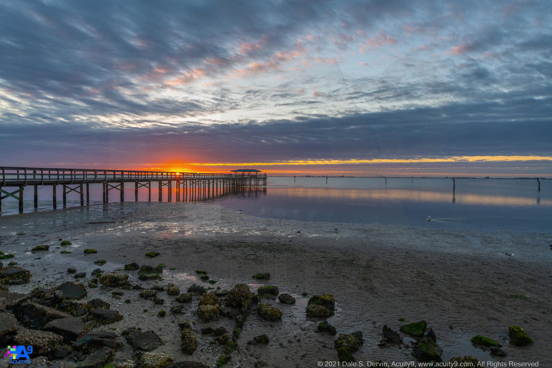 Safety Harbor Dawn