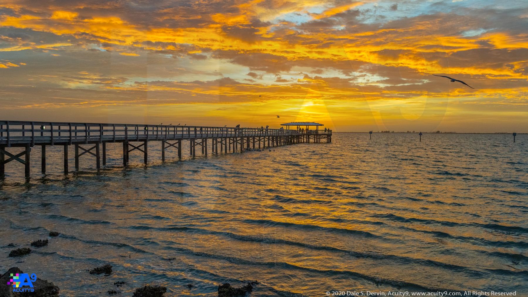 """Safety Harbor Dawn 1-22-2020"""