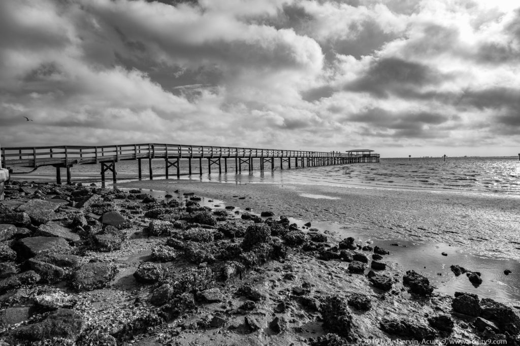 Safety Harbor Pier, Black and White